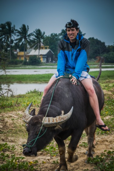 Attempting to ride the water buffalo