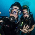 DQ 16 - Jan 2015 - Similan Diving Safaris - AreWeDreaming.com-103