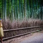 Arashiyama Bamboo Streets, Kyoto, Japan
